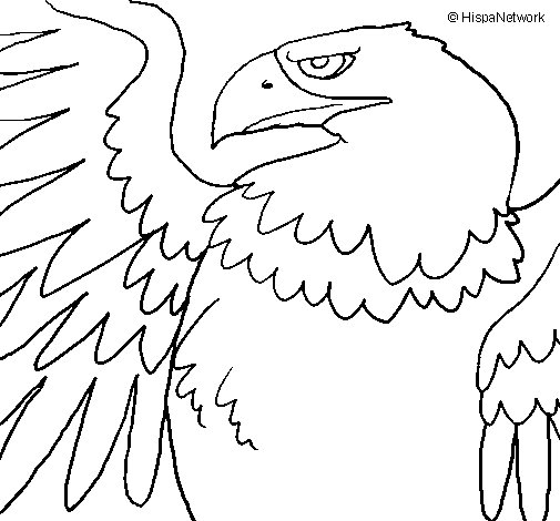 Coloriage de aigle imp rial romain pour colorier - Coloriage aigle ...