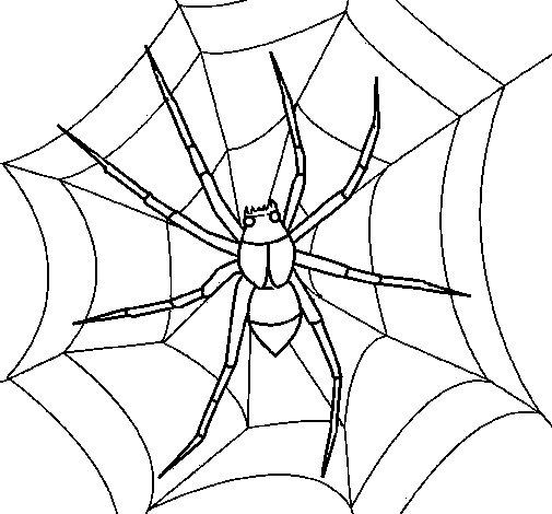 Coloriage de araign e pour colorier - Araignee dessin ...