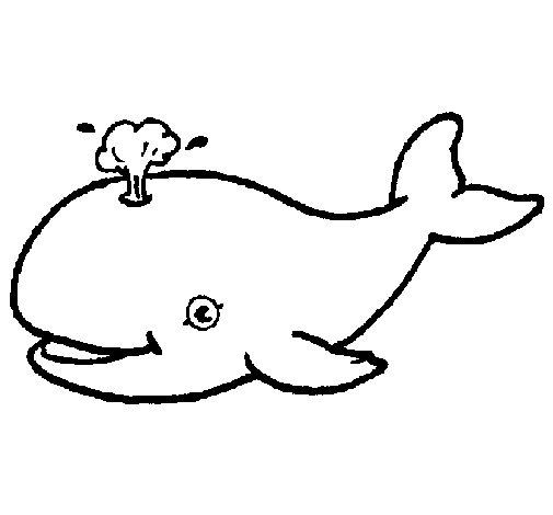 Coloriage de baleine jetant de l 39 eau pour colorier - Coloriage de baleine ...