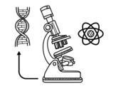 <span class='hidden-xs'>Coloriage de </span>Biologie à colorier