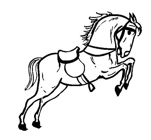 Coloriage de cheval avec chaise qui saute pour colorier - Coloriage cheval qui saute ...