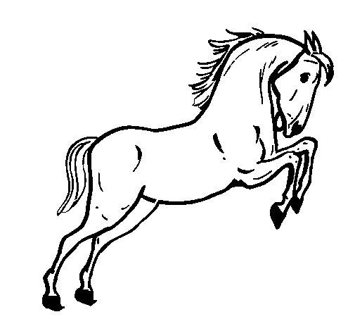 Coloriage de cheval qui saute pour colorier - Coloriage cheval qui saute ...