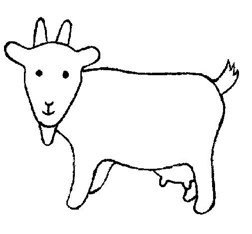 Coloriage de Chèvre 2 pour Colorier
