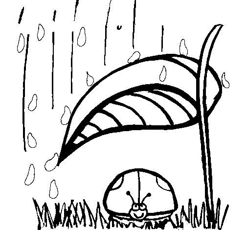 coloriage de coccinelle l 39 abri de la pluie pour colorier. Black Bedroom Furniture Sets. Home Design Ideas