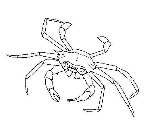 Coloriage de Crabe pour Colorier