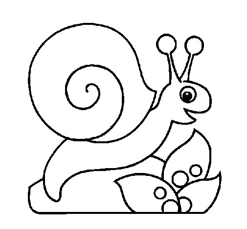 Coloriage de Escargot pour Colorier