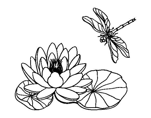 Coloriage De Fleur De Lotus Pour Colorier