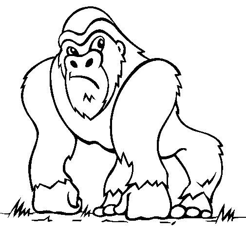 Coloriage de Gorille pour Colorier