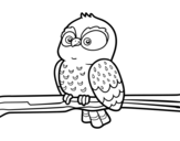 Dibujo de Hibou sur une branche