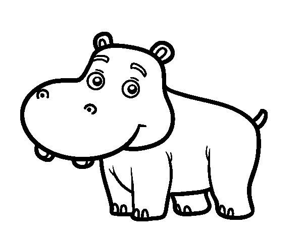 Coloriage de Hippopotame jeune pour Colorier