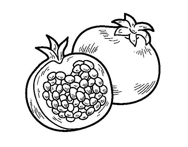 Coloriage de le grenade pour colorier - Grenade fruit dessin ...