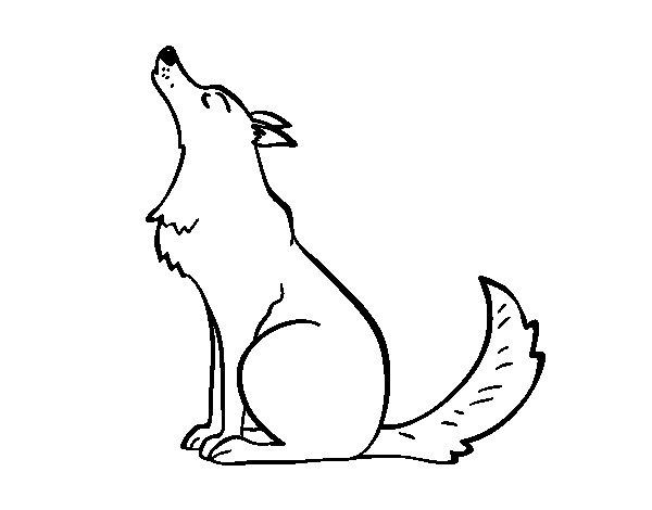 Coloriage de loup hurlant pour colorier - Coloriage de loup ...
