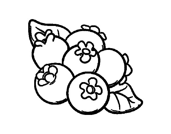 myrtille coloring pages - photo#3