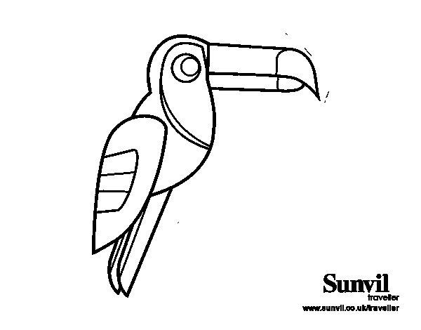 Coloriage de oiseau toucan pour colorier - Coloriage toucan a imprimer ...
