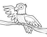 Dibujo de Perroquet en liberté