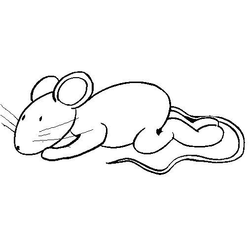Coloriage de Petite souris pour Colorier