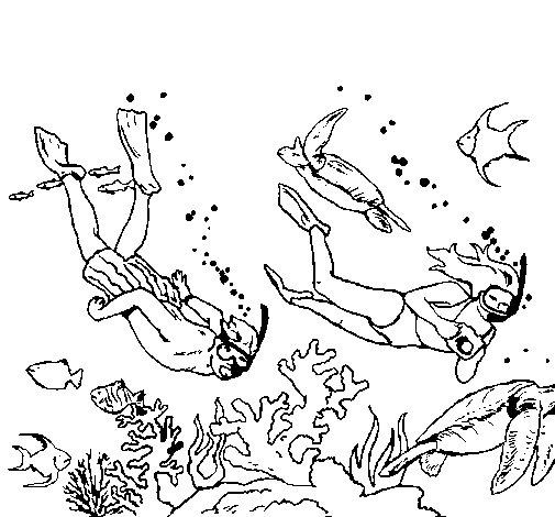 Coloriage de plongeurs sous marins pour colorier - Coloriage sous marin ...