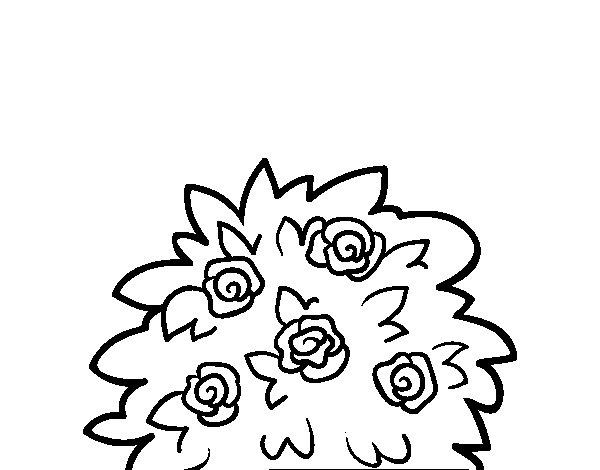 Coloriage de rosier des chiens pour colorier - Dessin de rosier ...