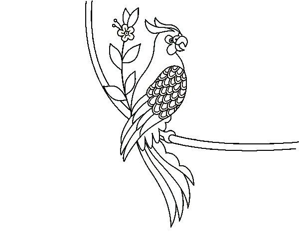 Coloriage de Tatouage de perroquet pour Colorier