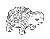 <span class='hidden-xs'>Coloriage de </span>Tortue étoilée d'Inde à colorier
