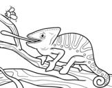 <span class='hidden-xs'>Coloriage de </span>Un caméléon avec la langue à colorier