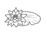 <span class='hidden-xs'>Coloriage de </span>Une fleur de lotus à colorier