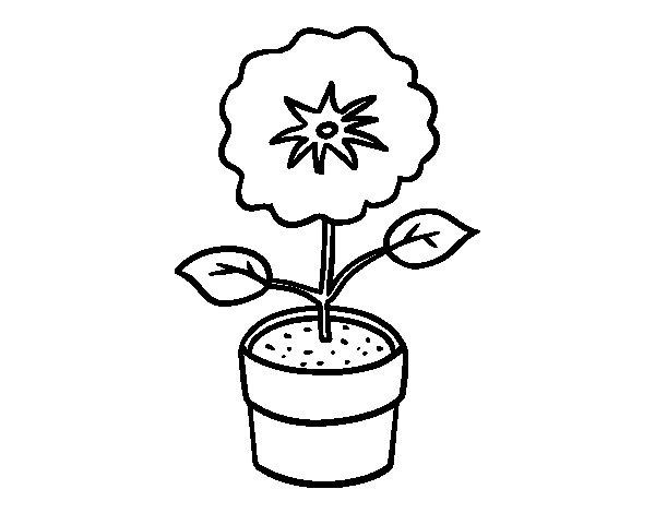 Coloriage de Une fleur de printemps pour Colorier