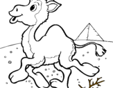 Coloriage Chameau colorié par camile