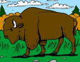 Coloriage Buffalo colorié par dylan