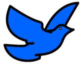 Coloriage Colombe de la paix colorié par FAB