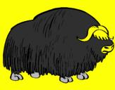 Coloriage Bison colorié par juliette