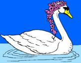 Coloriage Cygne avec des fleurs colorié par giuseppe