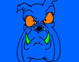 Coloriage Bulldog II colorié par mateo
