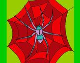 Coloriage Araignée colorié par florange3