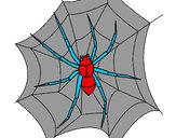 Coloriage Araignée colorié par anais2008