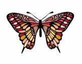 Le Grand Mormon papillon