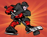 Joueur de hockey professionnel