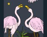 Coloriage Flamands colorié par KAKE2