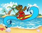 Chien surfing