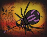 Venin d'araignée expulsé