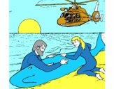 Sauvetage baleine