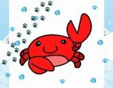 Aquarel le crabe