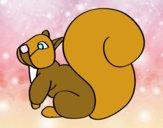 Écureuil avec une grande queue