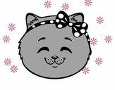 Face de petite chat content