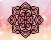 Mandala croissance exponentielle