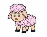 Petite mouton