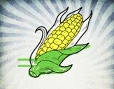 Un d'épis de maïs