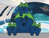 Coloriage Famille Husky colorié par Dhikr