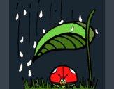 Coloriage Coccinelle à l'abri de la pluie colorié par KAKE2