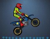 Moto le trial